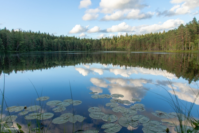 Ahvenalampi, Karnaistenkorpi, Lohja, Finland