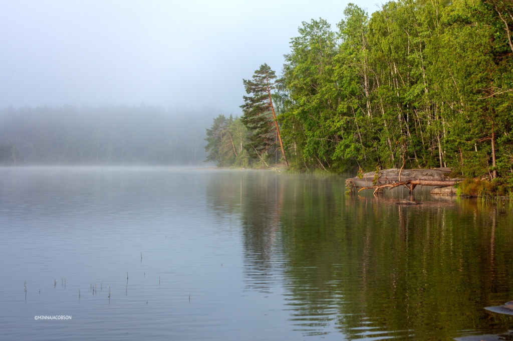Foggy lake Meiko, Kirkkonummi, Finland July 2020