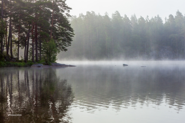 Rocky surface, foggy lake Meiko, Kirkkonummi Finland July 2020
